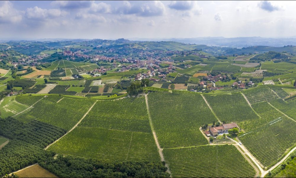 Bricco Genestreto vineyard