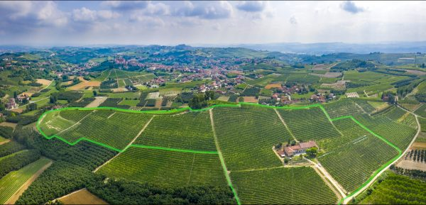 Highlighted Bricco Genestreto vineyard